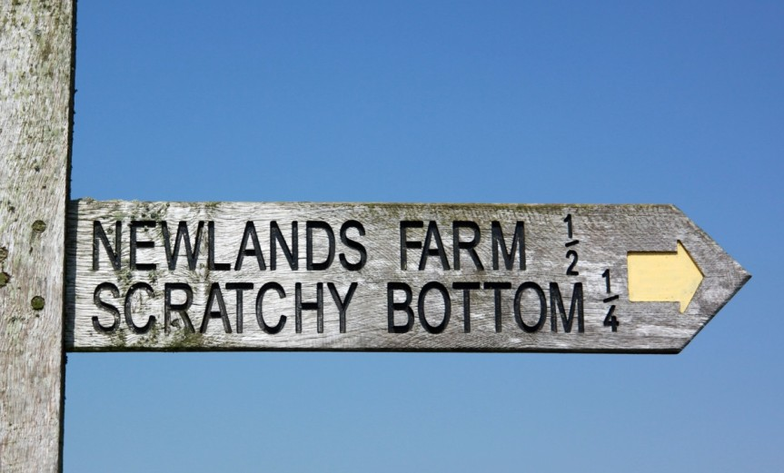 Scratchy Bottom
