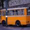 Capri Bus