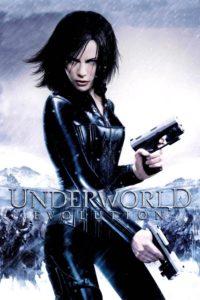 "Poster for the movie ""Underworld: Evolution"""