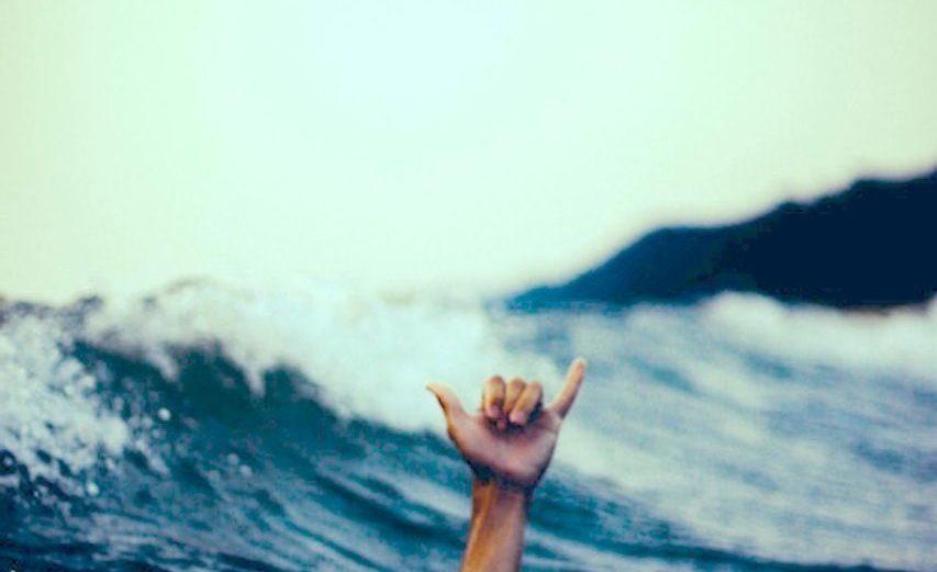 Surfing Phone 6